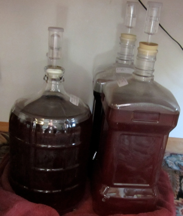 4 carboys wine