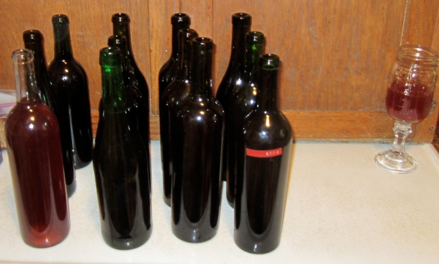 black plum wine