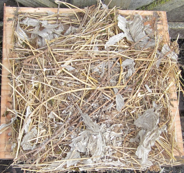 owl nest box bottom