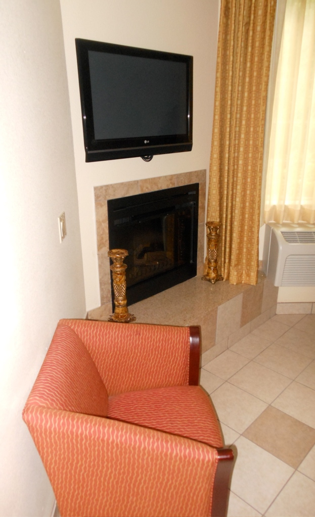 fireplace and TV in jacuzzi room