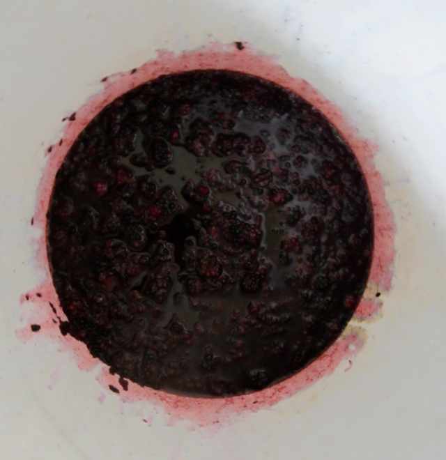 crusher blackberries