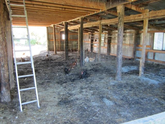 clean barn