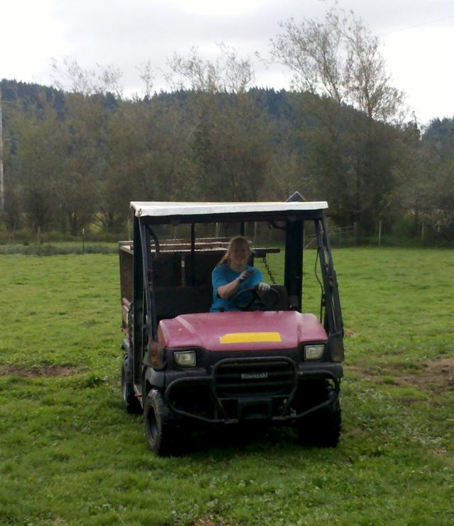 donna in mule