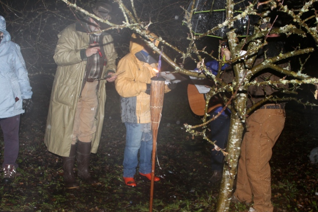 Anne leading us in Whimple Wassail song