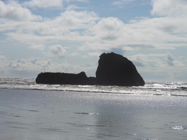Copalis Rock