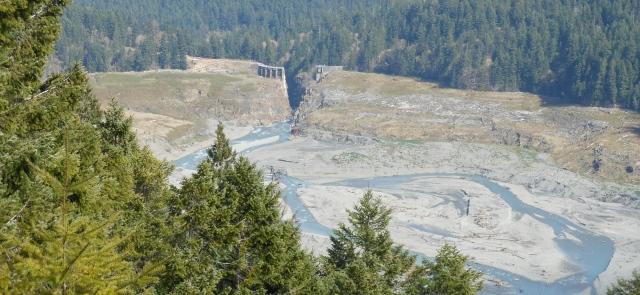 Elwha dam site