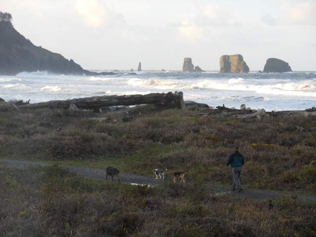 Tom and dogs again at Quileute Oceanside Resort
