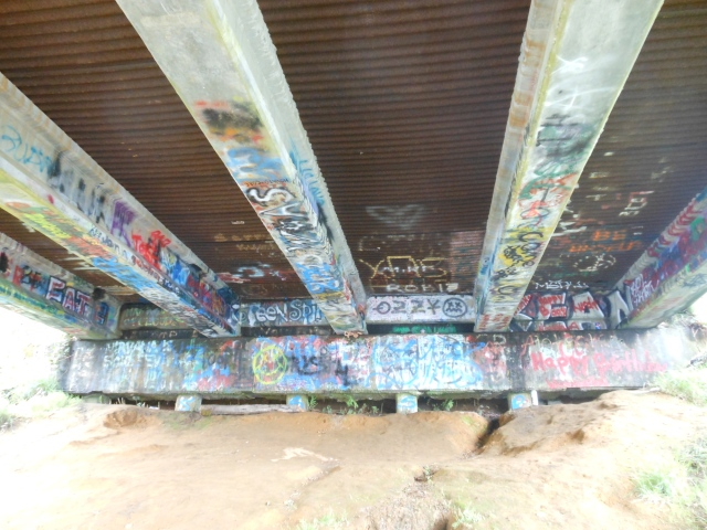 under Young Street Bridge