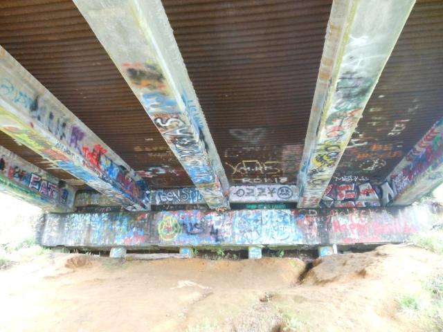 under Young Street Bridge