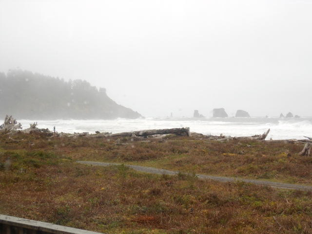 view from Quileute Oceanside Resort