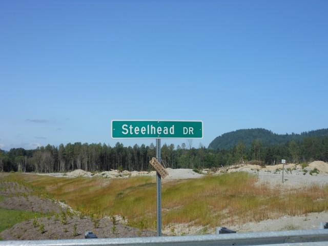 Steelhead Drive