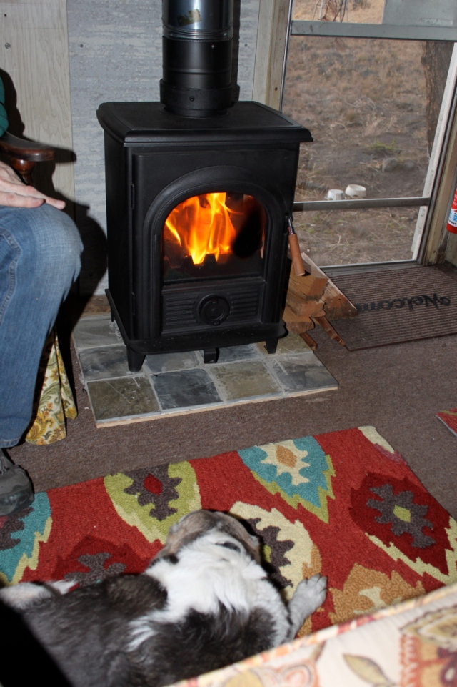Boles Aero woodstove with beagle