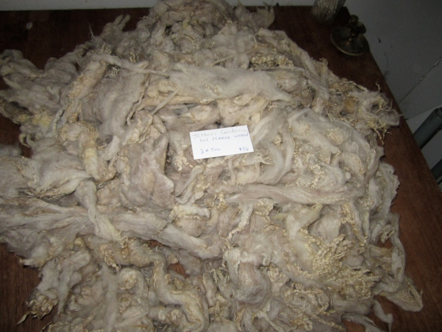 Jethro washed fleece