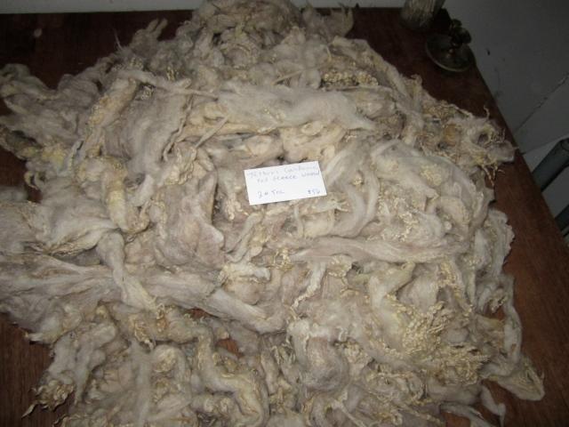 Jethro washed fleece