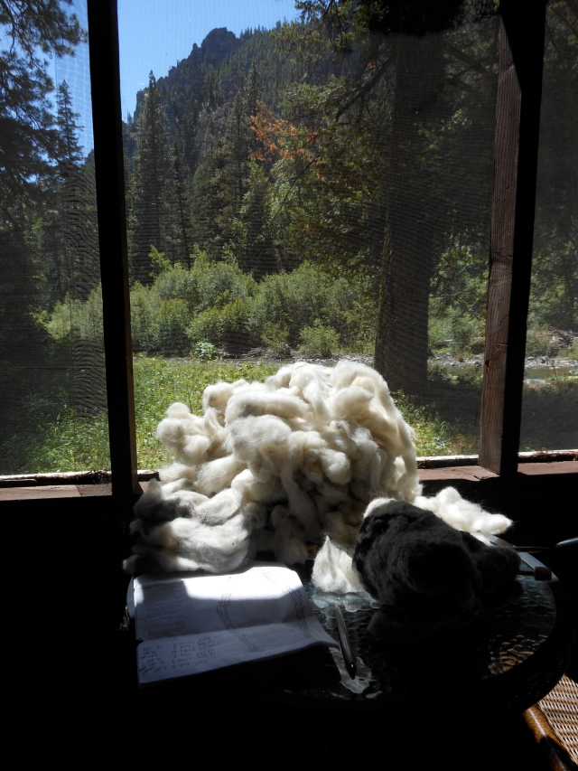 Edgar rock and wool
