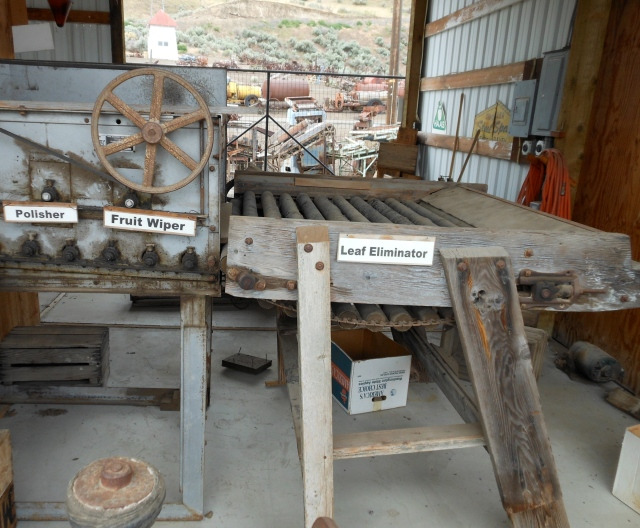 First portion of apple sorter