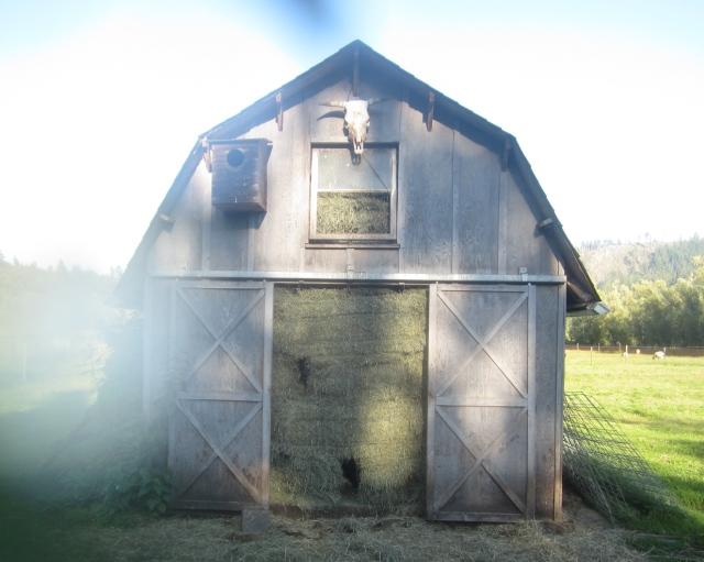 foggy hay barn