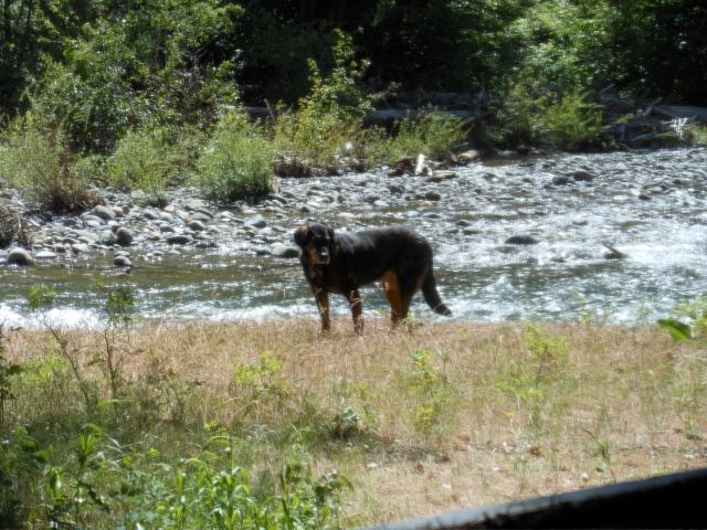Mopar on river