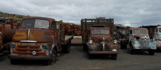 Old Dodge trucks
