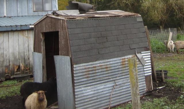 grampa shed