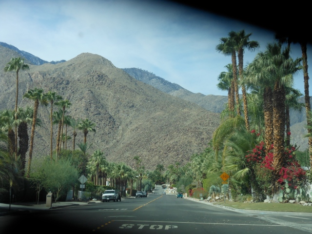 palm-springs-road