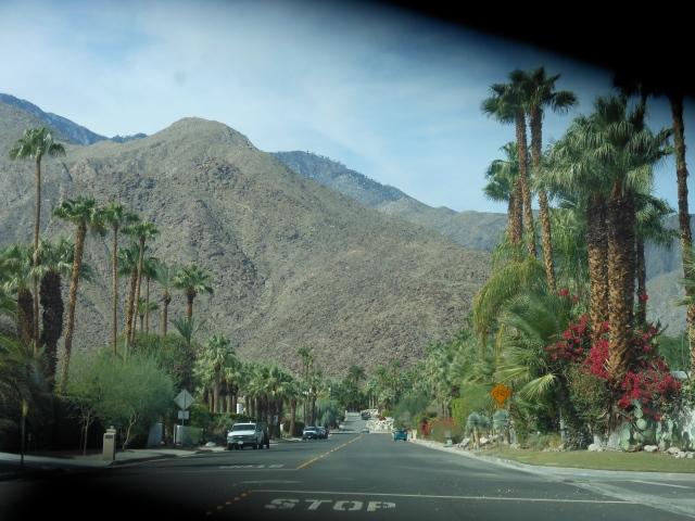 palm-springs-road