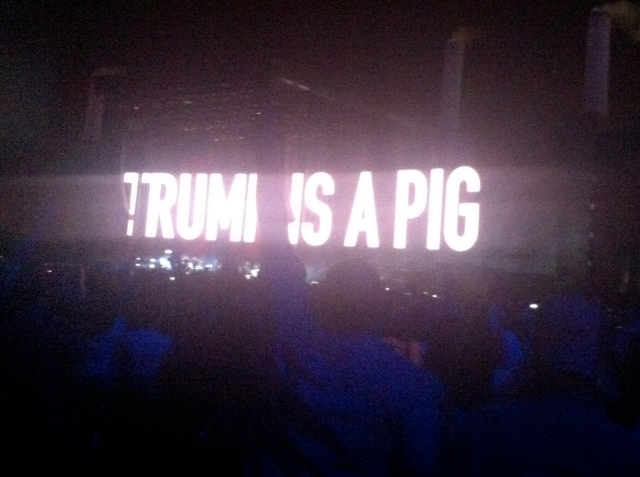 trump-is-a-pig