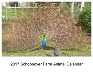 2017-schoonover-farm-animal-calendar