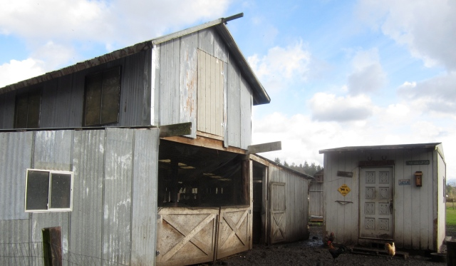 barn-and-fed-shed-with-netting