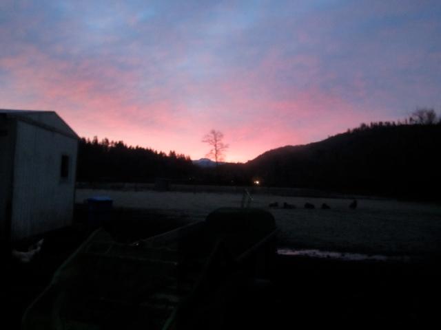 sunrise-over-manure-spreader