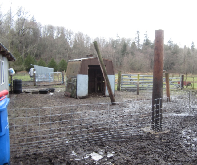 old-sheep-pen