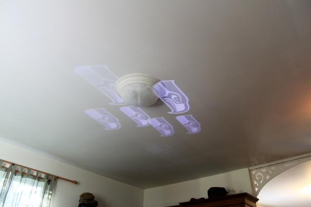 seahawk-ceiling