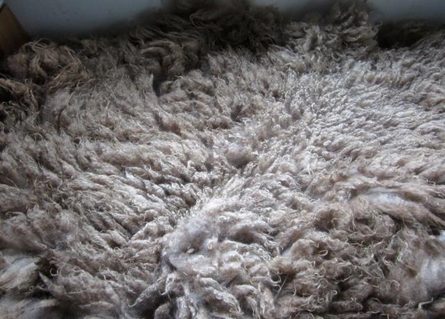 huey fleece