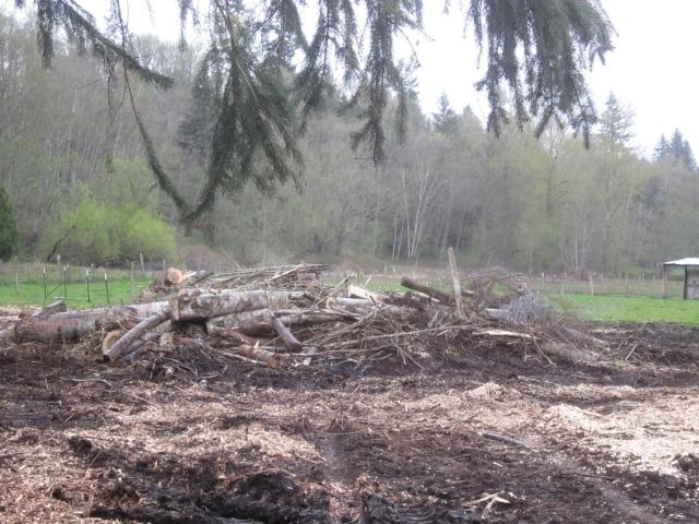 large pile