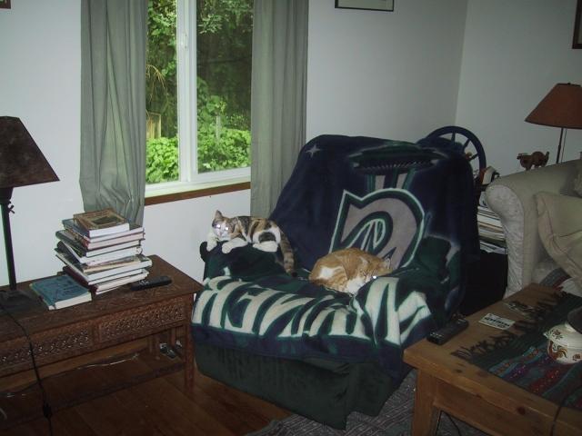 chloe&doogiein chair 9:2006