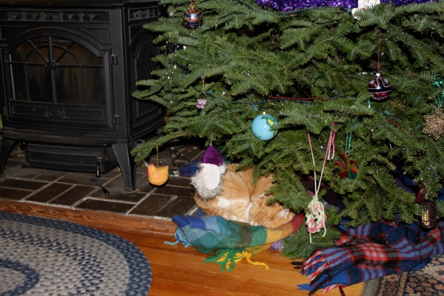 doogie under tree 12:2014