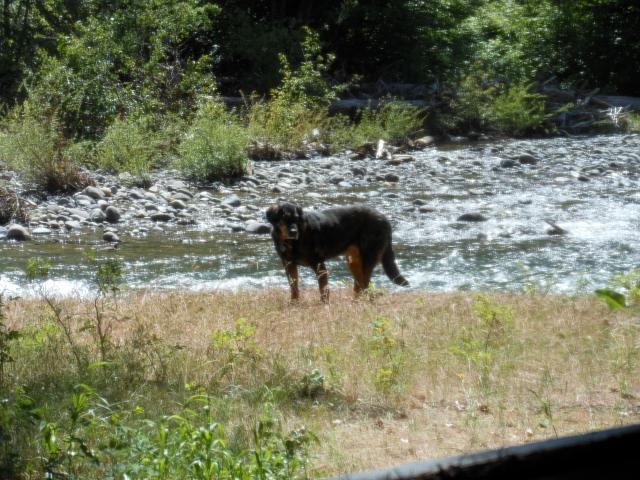 6:3:2016 Mopar on river