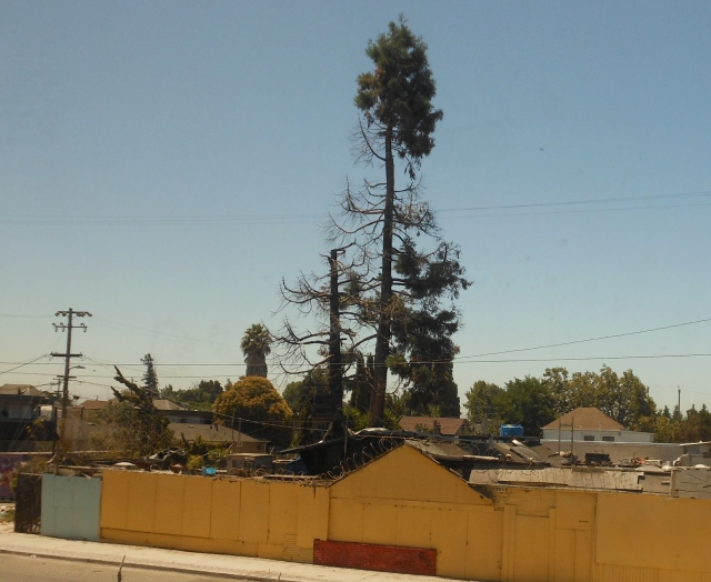 odd Oakland property
