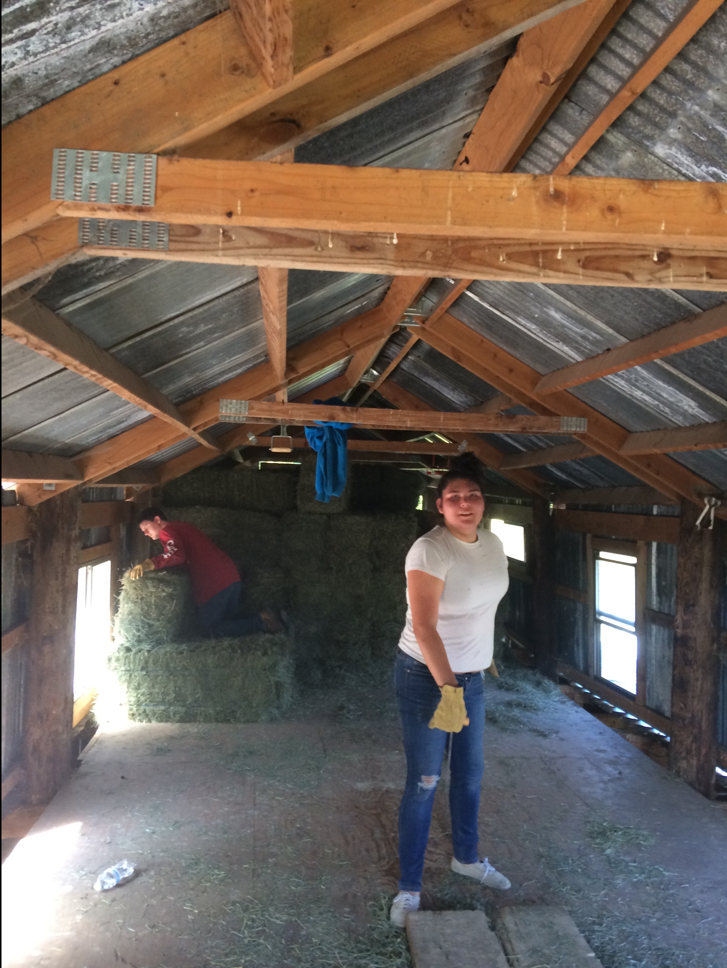 rianna-and-josh-stacking-hay.jpg