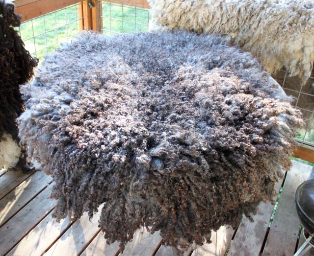 Tanyas fleted fleece rug