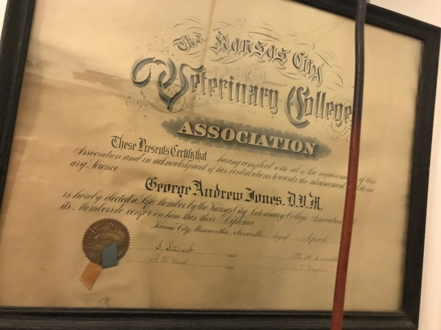 Dr. Jones Vet diploma