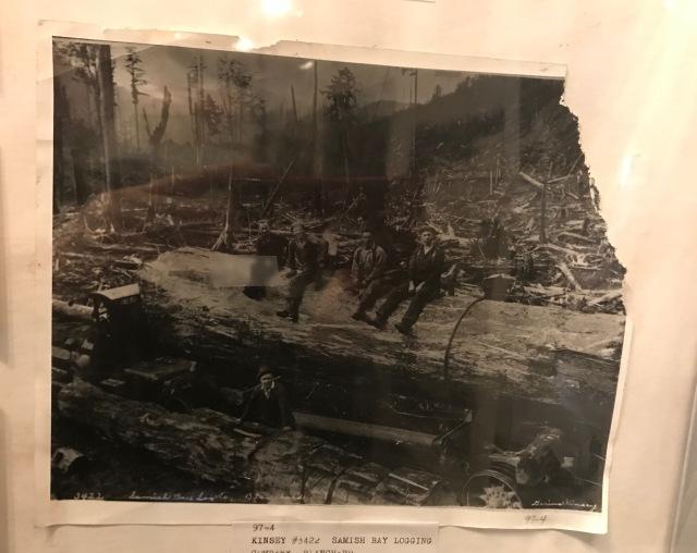 Samish Bay Logging Compnay Blanchard