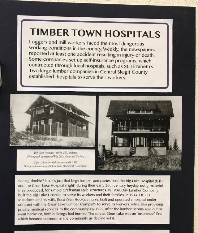 Timber hospitals