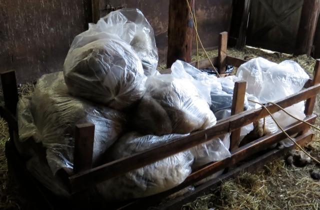 bags of wool