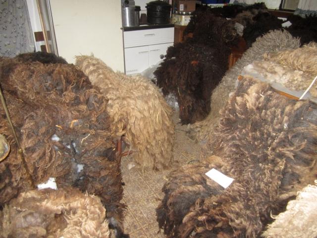 kitchen wool