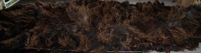 hodor fleece