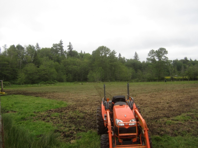 first tilling done