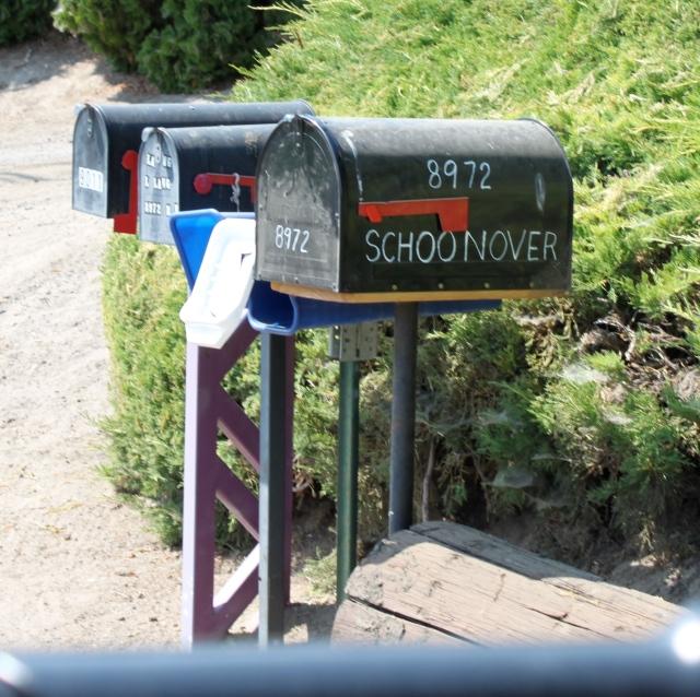 Naches mailbox