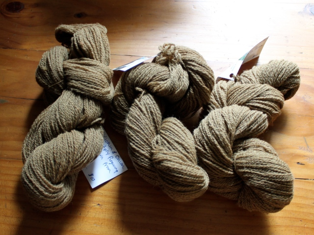 Wolf lichen and onion skin dyed yarn skeins