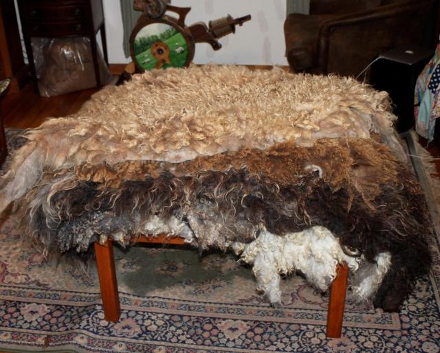 felted fleeces